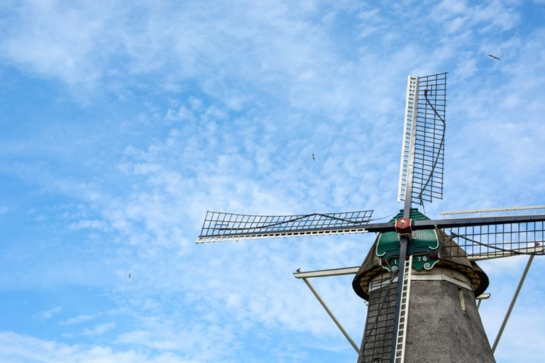old-dutch-windmill-from-the-year-1776-with-blue-cloudy-sky-and-flying-birds-zwolle-the-netherlands_t20_NxYWGB
